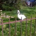 swan-in-garden-low-res-.jpg